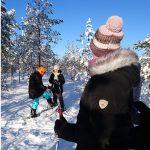 Husky-Tour in Finnland Feb. 2020